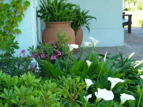 Jardinería & paisajismo jardines hue